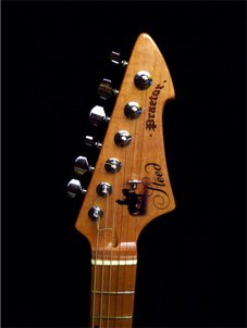 Steed headstock